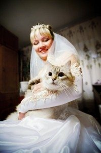 Pets at Cleveland Weddings - Picture of a bride holding a cat in her wedding gown.